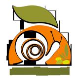 – Miceli's Snail